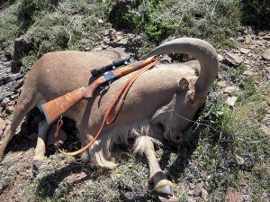 It's best to Keep it Simple when hunting Aoudad. Sheriff Jim Wilson