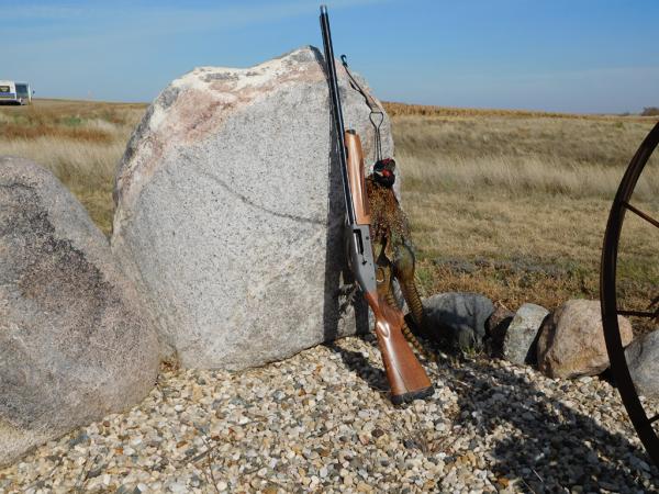 mossberg-930-pro-series-12-gauge-sheriff-jim-wilson